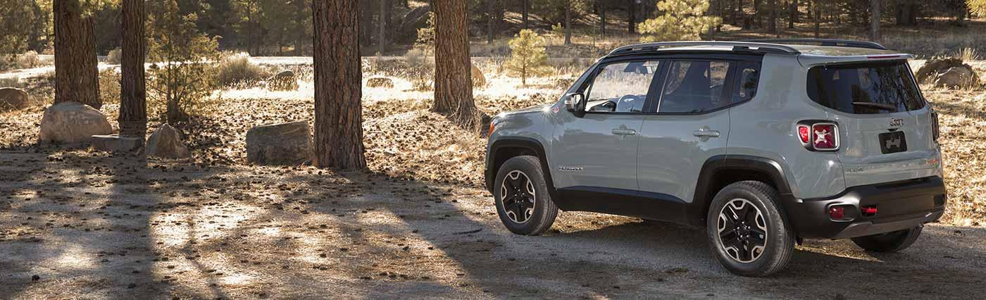 2016 Jeep Renegade Mt. Juliet TN