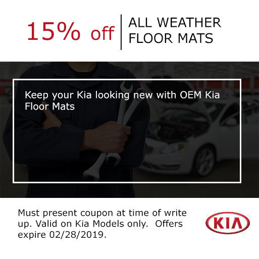 All Weather Floormats