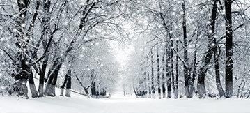Winterizing Your Vehicle