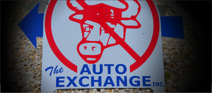The Auto Exchange Inc Auto Exchange