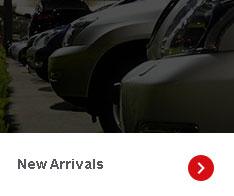 The Auto Exchange Inc Special
