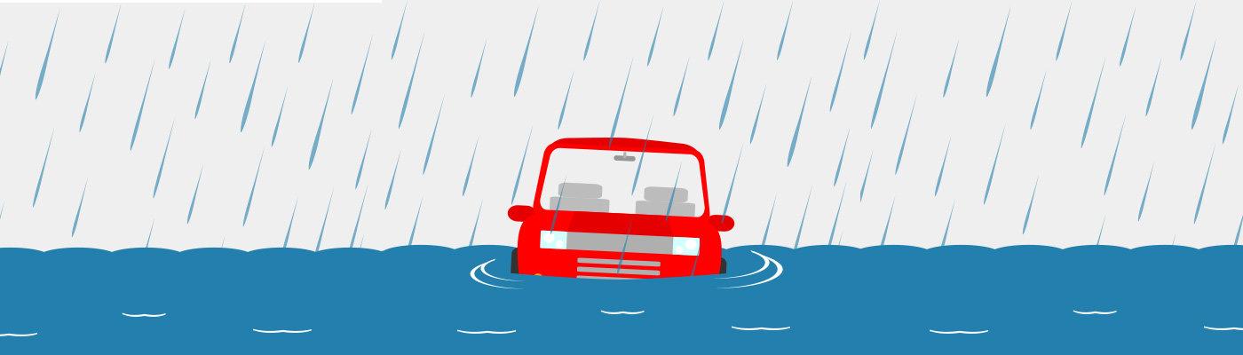 Avoid A Weather Damaged Vehicle